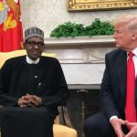 "Trump's ""Lifeless Comment"": Afenifere Advises Buhari Against Seeking Re- election"