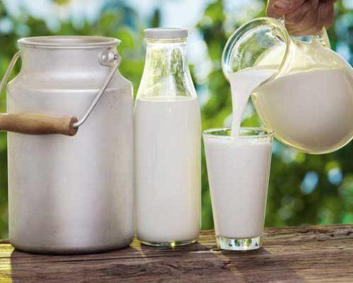 Milkpic-500x400.jpg