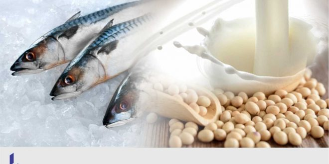 Poverty, Culture, Poor Dietary Practices Responsible for Protein Deficiency in Nigeria - New Report